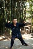 Taiji Quan. Chinese Wushu-Taiji Quan in ChongQing ,WestSouth of China Stock Photos