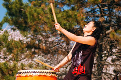 Taiko Drumming. A Japanese Woman performs Traditional Taiko Drumming Stock Photos