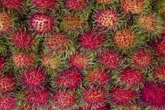 Tailândia deliciosa e barata do Rambutan somente Foto de Stock Royalty Free