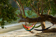 Tailândia, ilha de Surin do koh Fotos de Stock