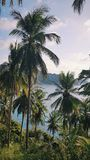 Tailândia, Ko Tao Lookout, paisagem, ponto de vista, praia de Chalok foto de stock royalty free