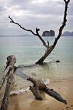 Tailândia: Mar de Andaman em Krabi Fotografia de Stock