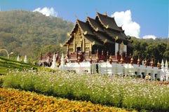 Tailândia: o jardim de flores o mais bonito em Tailândia Fotografia de Stock Royalty Free