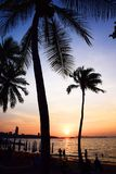 Tailândia pattaya Imagem de Stock Royalty Free