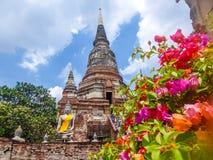 Tailândia - templo em Ayutthaya com as flores em torno dele foto de stock royalty free