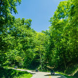 Tail of the dragon scenic road in great smoky  mountains Royalty Free Stock Images