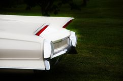 Tail fins Stock Images
