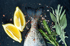 Tail of fresh raw Dorado or sea bream fish on black slate stone board with spices, herbs, lemon and salt. Top view stock photos