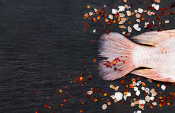 Tail of fresh raw red tilapia fish on black slate stone board with spices, chili pepper, lemon and pink salt. Tail of fresh raw red tilapia fish on black slate Stock Images