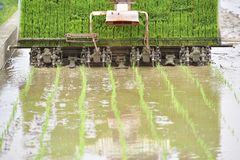 Tail of rice trans-planter. Royalty Free Stock Photography