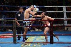Tailandés tailandés del boxeo o de Muay Fotografía de archivo