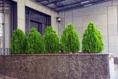 Tailandês verde decorativo pequeno em uma cerca de mármore perto da parede da construção Fotos de Stock Royalty Free