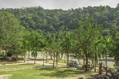 Tailand.Pattayya.Zoopark Stock Photos