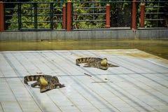 TAILANDIA demostración del cocodrilo del 4 de abril de 2013 en Koh Samui Imagen de archivo
