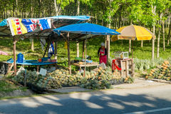 Tailandia, Phuket - 19 de febrero de 2017: mercado callejero en Tailandia Piñas para la venta Imagen de archivo libre de regalías