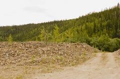 Tailings pile on Bonanza Creek Royalty Free Stock Image