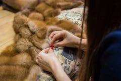 Tailleur réparant le manteau de fourrure photos libres de droits