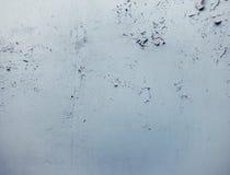 Taillierte Wand im alten Builiding Lizenzfreies Stockfoto