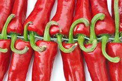 Tails green chili peppers Stock Photos