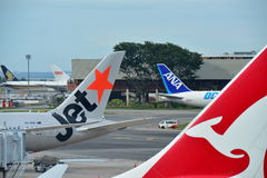 Tails of Jetstar International, Qantas and ANA Cargo aircraft at Changi Airport Royalty Free Stock Images