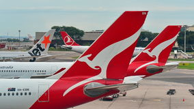 Tails of Jetstar International, Qantas and Turkish Airlines aircraft at Changi Airport Royalty Free Stock Photo