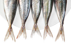 Tails of raw mackerel on a plate. On a white background Stock Images