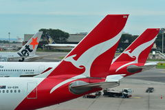 Tails of Singapore Airlines, Jetstar International and Qantas aircraft at Changi Airport Royalty Free Stock Photos