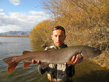 Taimen som fiskar Mongoliet Arkivbilder