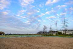 Tainan Liujia Linfengying, Taiwan - January 26, 2018: Linfengying farm in winter and surrounded with paddy field, taxodium distich. Um tree and blue sky Stock Images