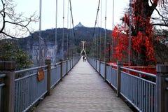 Tainmem mountain in Zhangjiajie city Stock Photography