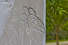 Taino Bird Petroglyphs 1. Stone petroglyphs left behind by the Taino indians in the island of Puerto Rico called Borinquen by the indians. Petroglyphs have been Royalty Free Stock Photography