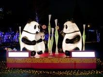 Taipei lyktafestival 2014 Arkivfoto