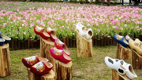 2019 Shilin official residence tulip exhibition, Taipei, Taiwan. Taipei Shilin official residence, Taiwan - 21 Feb, 2019: 2019 Shilin official residence tulip stock images