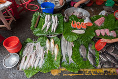 Taipei Street in one of suburb, district. Market Street in Taipei. Selling Fish Royalty Free Stock Photos