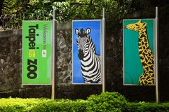 Taipei Taiwan zoo, baner, giraff, sebra royaltyfria foton