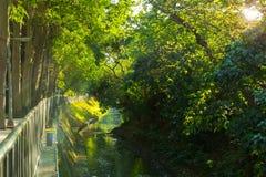 Taipei, Tajwan, społeczność park, Mały park, Creekside zdjęcia royalty free