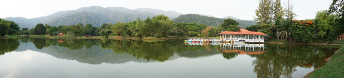 Taiping湖庭院,马来西亚 免版税库存图片