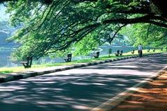 Taiping Lake Garden Stock Image
