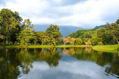Taiping lake garden at sunset, Taiping, Malaysia. Calm waters at the Taiping Lake Gardens stock images