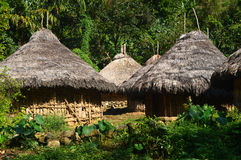Tairona huts on the trail to the Lost City. Tairona Tayrona huts on the trail to La Ciudad Perdida the Lost City in the Sierra Nevada, Colombia royalty free stock photography