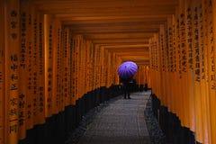 Taisha di Fushimi Inari Immagine Stock
