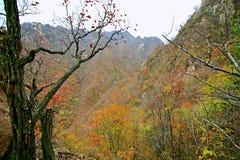 Taishan ocidental, Ruyang fotografia de stock