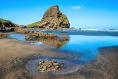 Taitomo ö på lågvatten, Piha strand, Nya Zeeland royaltyfri foto