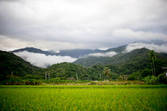 Taitung Farm and mountain Stock Photography