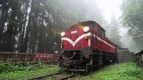 TAIWÁN - 15 DE MAYO DE 2019: Tren histórico en el ferrocarril en el área escénica nacional de Alishan en tiempo de niebla almacen de video