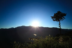 Taiwan - Alishan Sunrise. Sunrise Shot of Alishan, Taiwan Royalty Free Stock Photo