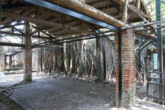Taiwan : Anping Tree House Stock Photos