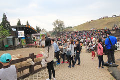 Taiwan Cingjing Farm view Royalty Free Stock Image
