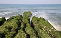 Taiwan coast Laomei shicao. Stone trench of Taiwan coast royalty free stock images