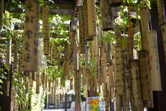 Taiwan die Bamboe wensen royalty-vrije stock fotografie